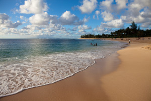 You Want To Move To Hawaii Here's How You Can Pay For It